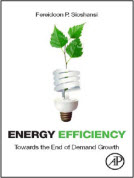 Energy Efficiency: Towards The End of Electricity Demand Growth